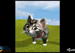 HC_Kitten_02